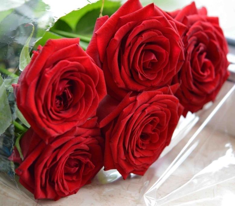Картинки букет роз настоящий